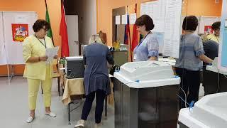 8 сентября - выборы в Совет депутатов Пушкинского городского округа