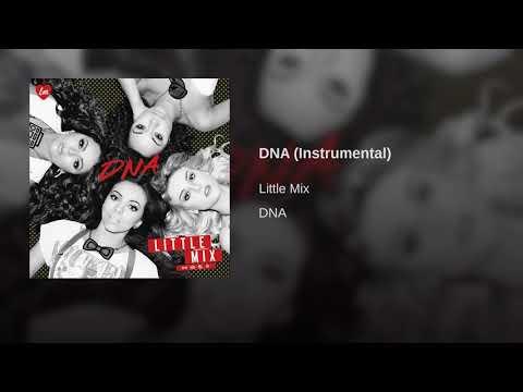DNA (Instrumental) - Little Mix (Official Audio)