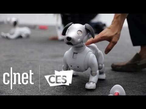CNET's best tech of CES 2018 (видео)