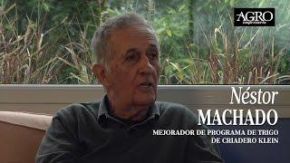 Néstor Machado - Mejorador de Programa de Trigo de Criadero Klein