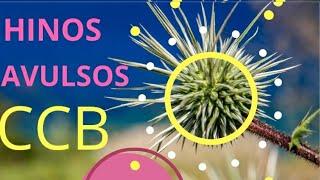 AVULSOS GRATIS MP3 BAIXAR HINOS CCB