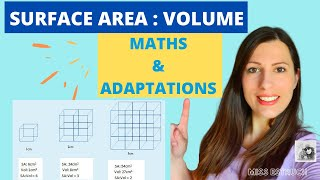 Surface area:Volume ratio calculation & the relevance in Biology.The importance in exchange surfaces