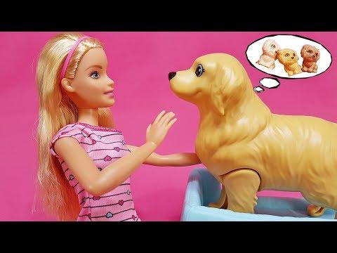 Schwangere Barbie Hundemama Welpen Geburt 🐕 Barbie Kurzfilm deutsch