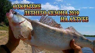 Рыбалка в июне 2019 на ахтубе
