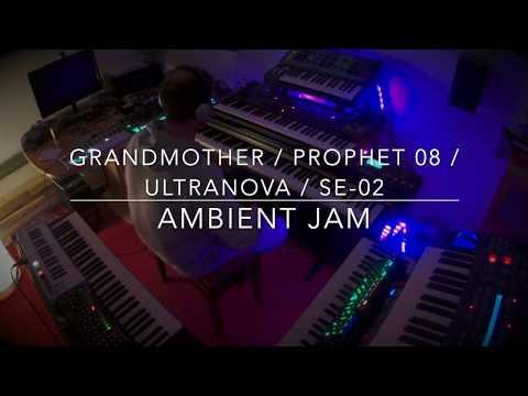 Prophet 08 / Grandmother / Ultranova / SE-02 Ambient Jam #moog#novation#davesmithinstruments#roland