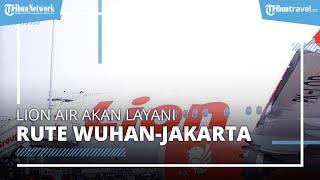 Lion Air Akan Layani Penerbangan Wuhan-Jakarta? Kemenhub Beri Penjelasan