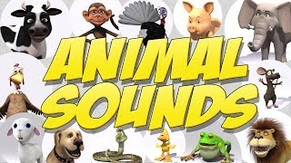 Learn Animal Sounds