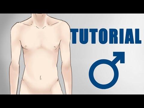 Männer RICHTIG zeichnen | Anatomie für Anfänger