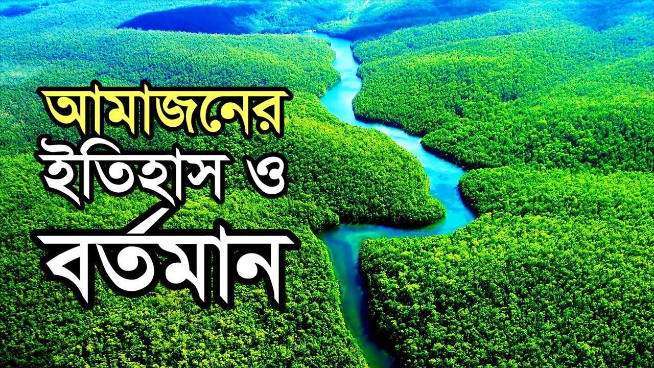 হুমকির মুখে পৃথিবীর ফুসফুস এ্যামাজন বন! Amazon Forest under threat!