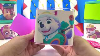 Learn Colors with Paw Patrol Who is in the Toy Surprise Box  | Fizzy Fun Toys