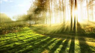 10 Hours Relaxing Music for Stress Relief - Relaxation Music, Therapy for Stress Relief, Healing