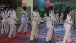 Taekwondo Promotion