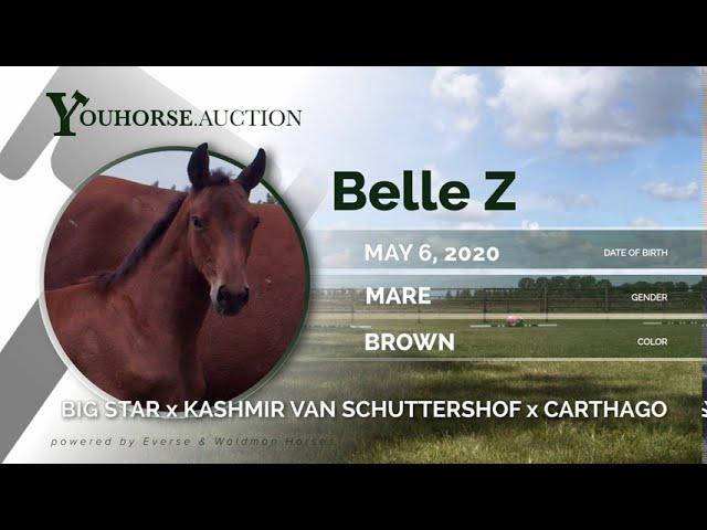 Belle Z