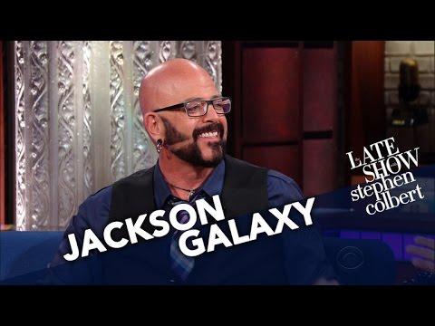 Cat Behaviorist Jackson Galaxy Converts Stephen Into A Cat Person