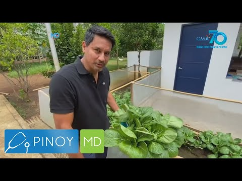 [GMA]  Pinoy MD: Fresh from the garden recipes!