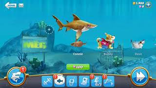 Hungry Shark World The Game Video 11