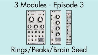 3 Modules #3: Rings, Peaks, Brain Seed