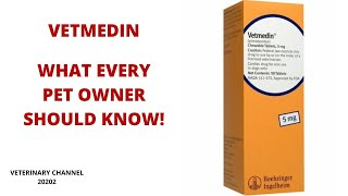 What Every Pet Owner Should Know About The Use Of Vetmedin | Pimobendan Side Effects