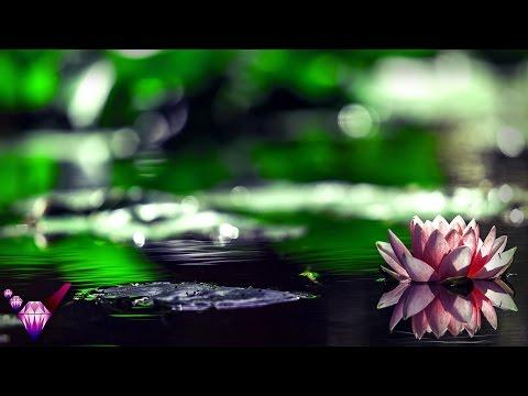 Lights of Venus : Caverns (Mystical Meditation Music / 304