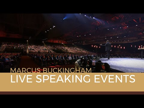Sample video for Marcus Buckingham
