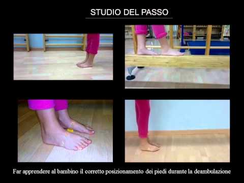 Ginnastica per portamento di video per adulti