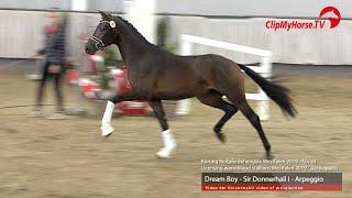 Le Champion des étalons Westphaliens vendus 1.900.000€ !