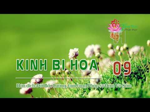 Kinh Bi Hoa -9