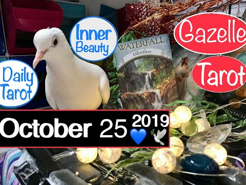 October 25 2019 Daily Tarot Reading ✅ Beauty Surrounds You #tarot #tarotreading #tarotreader