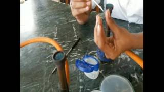 How to observe motility of bacteria by hanging drop technique