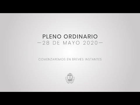 El Ayuntamiento celebra el primer Pleno Ordinario de la era Covid-19