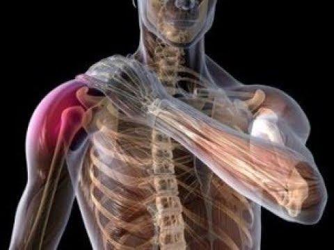เส้นเลือดขอดในมดลูกและกีฬา