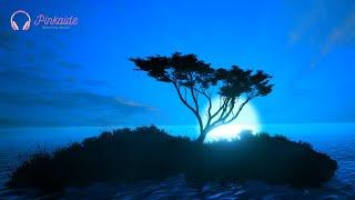3 Hour Sleep Music / The Sea Of My Heart / 🎵 Calm Music, Peaceful Stream, Soothing Music For Sleep