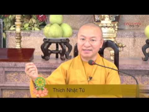 Vấn đáp: Trở về Đạo Phật nguyên chất để phụng sự nhân sinh (27/05/2014) - Thích Nhật Từ