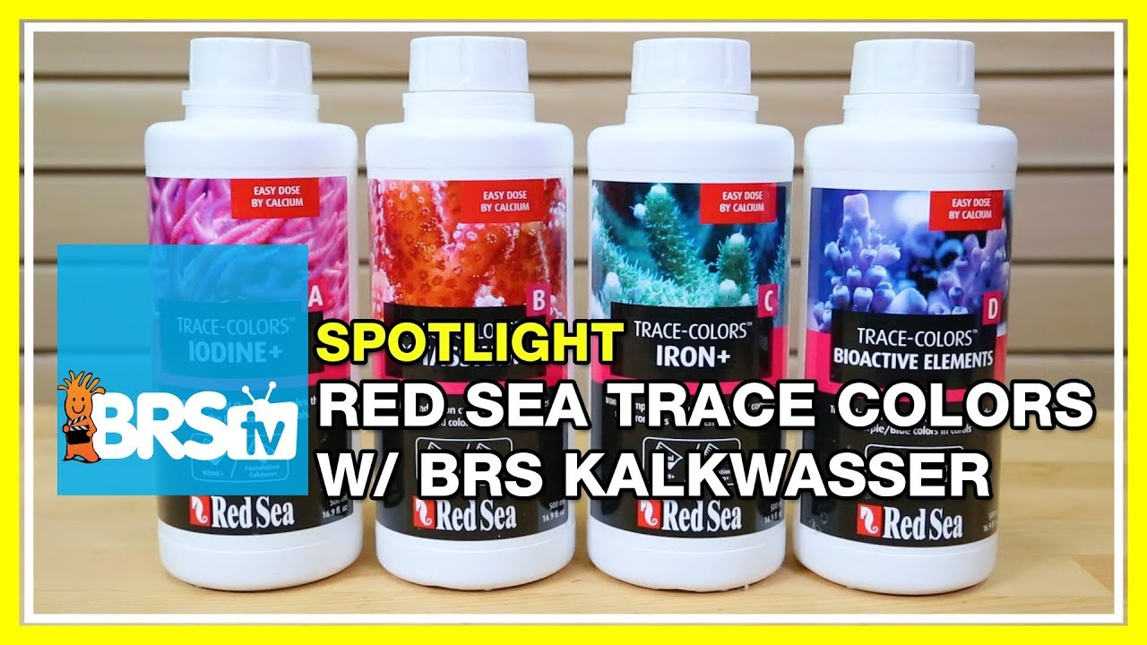 Using BRS Kalkwasser with Red Sea Trace Colors - BRStv