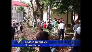 Новую «Аллею Дружбы» посадили в Москве