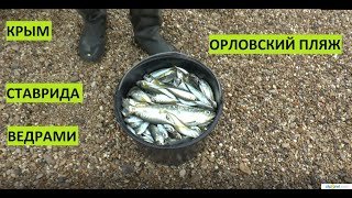 Севастополь рыболовная компания