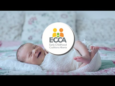 ECCA Story