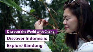 Gambar cover Discover Indonesia: Bandung