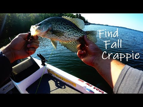 Find Fall Crappie (Top 5 fishing tips) Ep. 21 of 30 day challenge