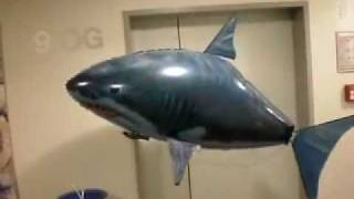 preview picture of video 'Air Swimmer Shark @ officeworx.at office'