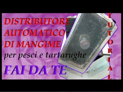 Distributore automatico di mangime per pesci o tartarughe fai da te TUTORIAL