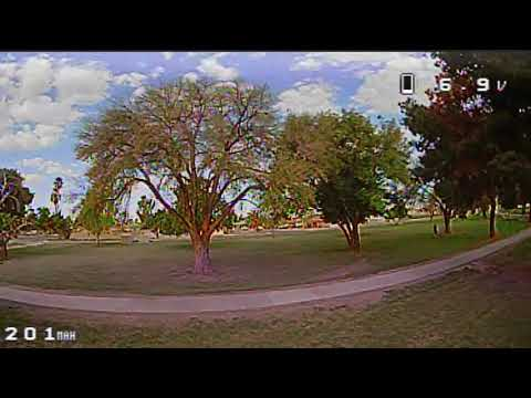 Eachine Trashcan Brushless Whoop - FPV Cactus Park Between & Around Trees(EV100)