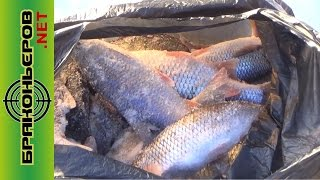 Зимняя рыбалка в шумихе на квх