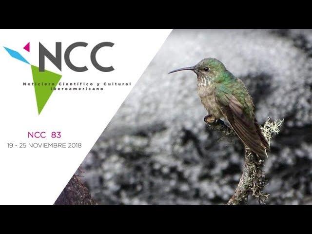 Noticiero Científico y Cultural Iberoamericano, emisión 83. 19 al 25 de noviembre de 2018.
