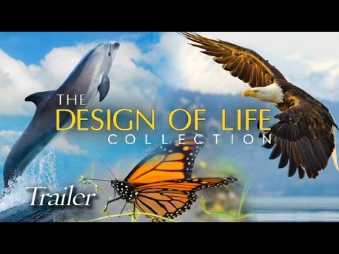 The Design Of Life Collection 3 DVD Set movie- trailer
