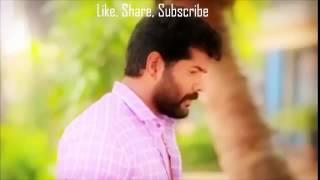 Man chimb jhale janu | High Quality Mp3 | Marathi melody song