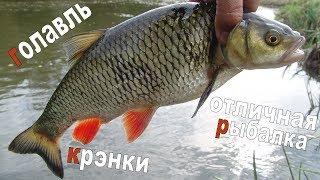 Что такое крэнк для рыбалки