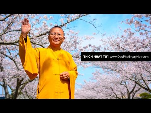 Chuyển hóa cảm xúc tiêu cực (06/04/2012) Thích Nhật Từ