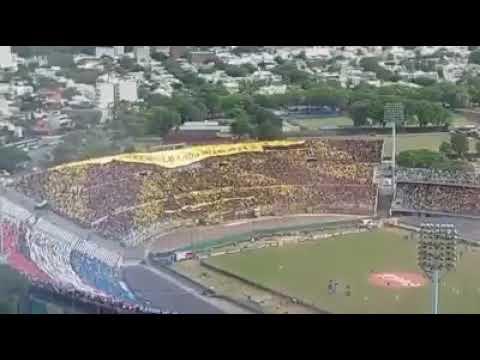 """""""💛🖤Hinchada De Peñarol💛🖤 Desde Hospital De Clinicas UNA TRIBUNA CANTA MAS QUE TRES"""" Barra: Barra Amsterdam • Club: Peñarol"""