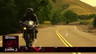 Memory Loss   Night Rider